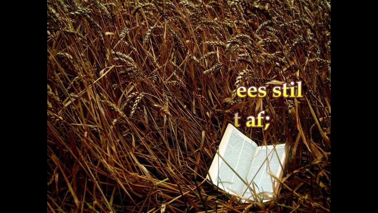Stil, mijn ziel, wees stil -  Opwekking 717 2