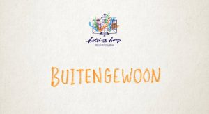 Buitengewoon - Matthijn Buwalda 2